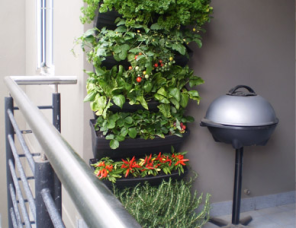 wallgarden balcony