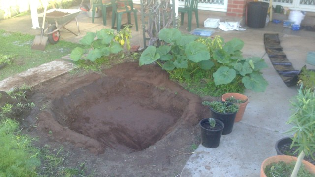 5 - pond dug