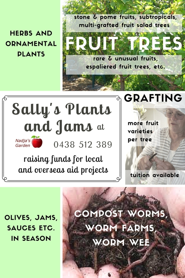 Sally's Plants and Jams