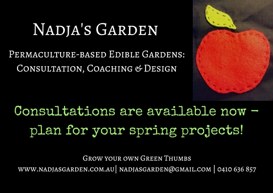 consultation promo.jpg
